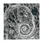 135_usa-rachel-singel-fiddlehead-ex-libris-intaglio
