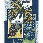 39_japan-takao-sano-butterflies-x1
