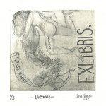 53_mexico-ana-karen-reyes-perez-dreams-siligraphy
