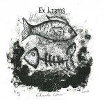 63_mexico-jose-eduardo-matias-martinez-eduardo-cohen-siligraphy